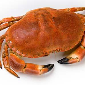 Crab Txangurro Pie with Absinthe